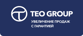 teo group logo